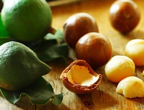 Makadamija biljno ulje